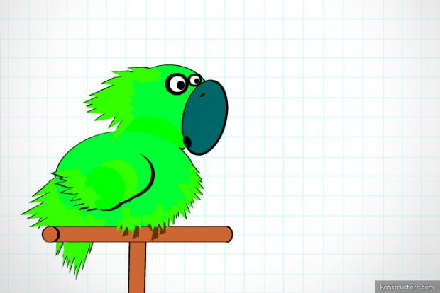 jack the parrot